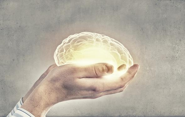 hands-holding-a-human-brain
